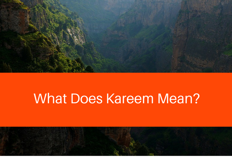 what does kareem mean