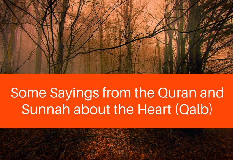 quran and sunnah about the heart